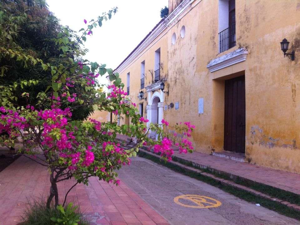 mompox flowers and street