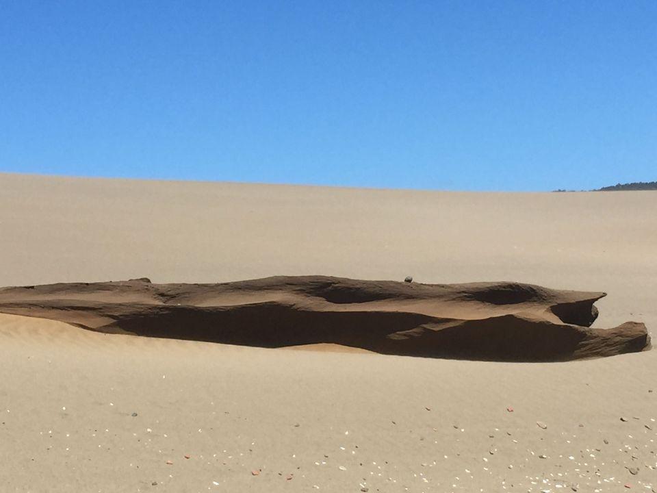 day1 dunes