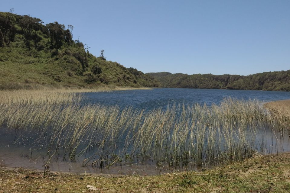 day1 lagoon