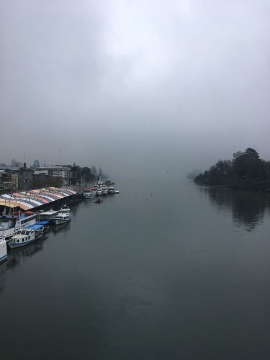 Valdivia view from bridge 2