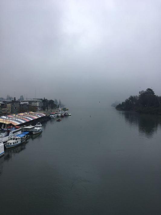 Valdivia view from bridge 2